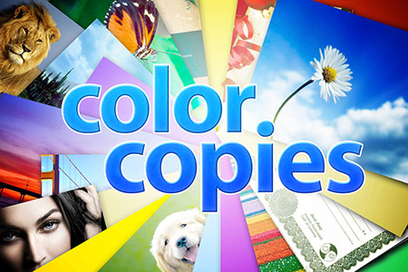 Zee Copy Excels At Handling Printing Jobs For Which The Quality Of Print Is Essential This Why Weve Been First Choice